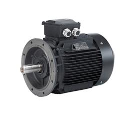 Sanitary Pumps High Efficiency Motors